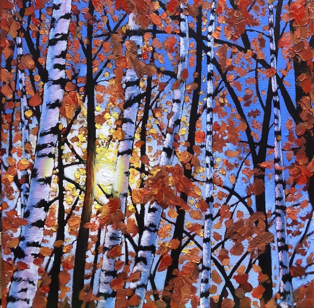 Birch Tree in Sunlight