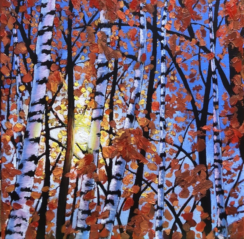 Birch Tree in Sunlight