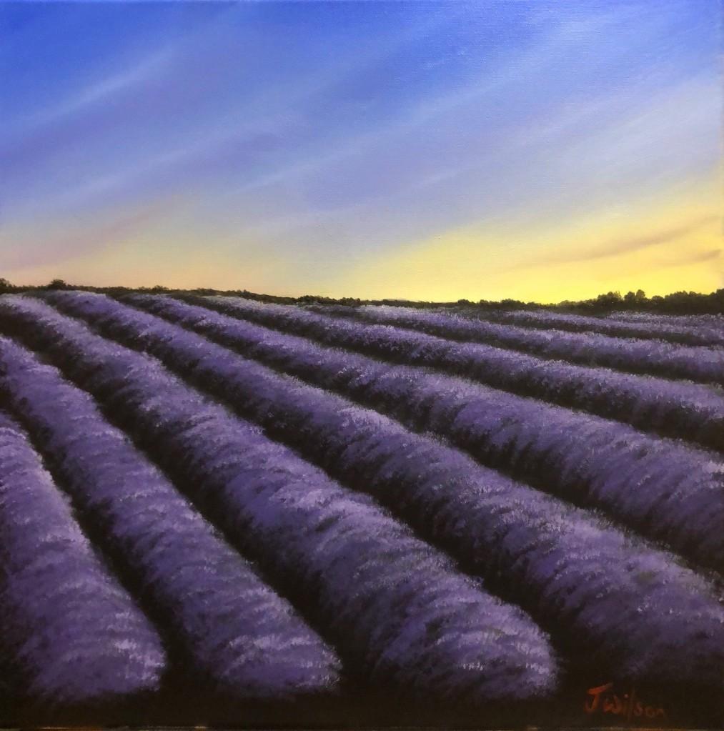 Landscape of Lavender